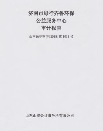 绿行齐鲁2017年度审计报告