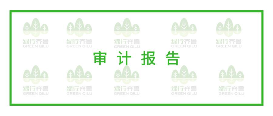 绿行齐鲁2018年审计报告